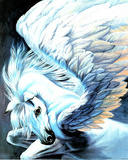 Pegasus Wings Poster by Sue Dawe