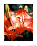 Baby in Flower ll - Poster