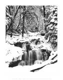 Snowy River (Waterfall) Kunstdrucke