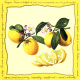 Lemons II Prints