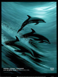 Faster Higher Stronger Dolphins U.S. Olympics Team Poster