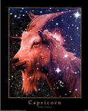 Astrology Horoscope (Capricorn) Posters
