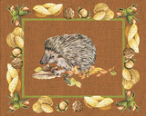 Nice Animals Hedgehog Prints