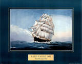 Bald Eagle ship, c.1852 Posters by Paul R. Hee