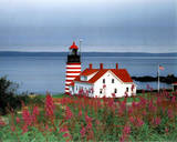 West Quoddy Head (Striped Lighthouse) Photo