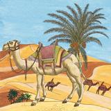 Arabian VII Plakater