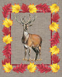 Nice Animals Deer Poster