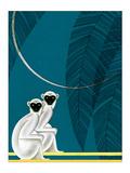 Two Monkeys Kunstdrucke von Frank Mcintosh