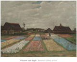 Flower Beds in Holland, c.1883 Print by Vincent van Gogh