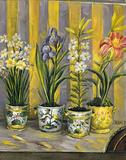 Flowers Prints
