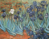Irises in Garden Poster by Vincent van Gogh