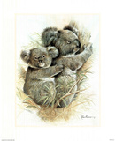 Koala Baby Hugs Mother (Wildlife) Posters