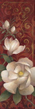 Magnolia Melody II Posters par Elaine Vollherbst-Lane