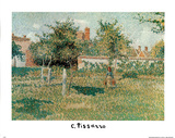 Field of Dream Garden Affiches par Camille Pissarro