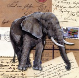 Africa Elephants Posters