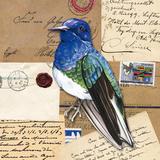 Birds Letters IV Print