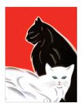 Black and White Cat Print van Frank Mcintosh
