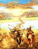 Cowboys (Cattle Drive) Posters