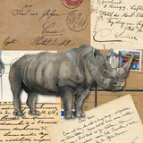 Africa Rhinoceros Prints