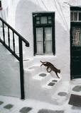 Greek Cat Posters van Hans Silvester