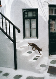 Greek Cat Prints by Hans Silvester