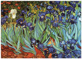 Irises in the Garden Print by Vincent van Gogh