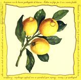 Lemons III Posters