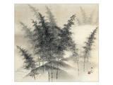 Bamboo Grove Kunstdruck