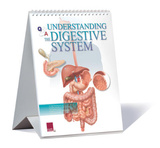 Understanding The Digestive System Educational Medical Flip Chart Prints