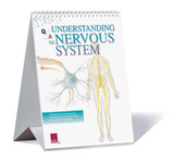 Understanding The Nervous System Educational Medical Flip Chart Posters