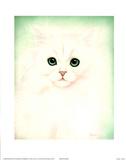 Kit Kat l Posters