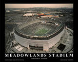 New York Jets New York Giants New Meadowlands Stadium Inaugural Season Art by Mike Smith