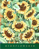 Sunflowers Posters by Deborah Argosy