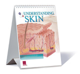 Understanding Skin Educational Medical Flip Chart Prints