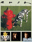 Rush Signals 1000 Piece Jigsaw Puzzle Puzzle