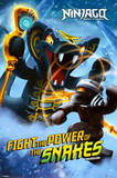 Ninjago Lego Posters