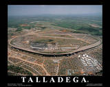 Talladega Super Speedway Sports Posters by Mike Smith