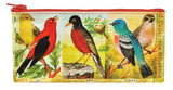 Bird Pencil Case Pencil Case