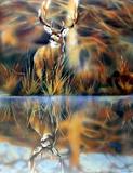 Buck Deer Prints by Dan McManis