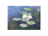 Water Lilies Effects Posters by Claude Monet