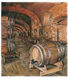 Wine Cellar no. 2 Posters