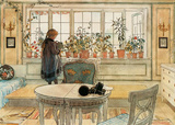 The Flower Window Print by Carl Larsson