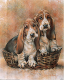 Basset Hound Puppies Posters by Dan McManis