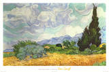 Vincent Van Gogh Oat Field with Cypress Art Print Poster Print