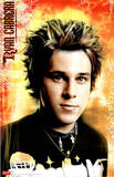 Ryan Cabrera (Face) Music Poster Print Prints