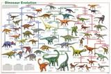 Laminated Dinosaur Evolution Educational Science Chart Poster Plakaty