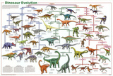 Laminated Dinosaur Evolution Educational Science Chart Poster Pôsters
