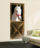 Sebastian Horse Giant Mural Poster Wall Mural