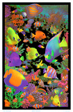 Living Reef Flocked Blacklight Poster Art Print Pôsters