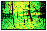 Summer Woods Flocked Blacklight Poster Art Print Billeder